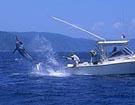 夏季钓鱼遇到雷暴雨怎么办?