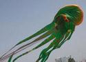 世界上最大的风筝