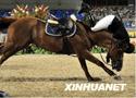 [组图]阿塞拜疆骑手贾迈勒•拉希莫夫意外坠马