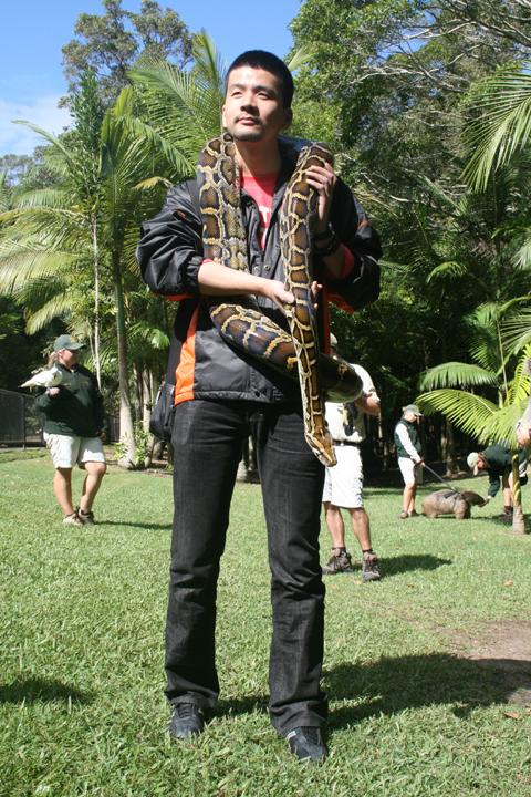 澳洲蟒蛇以及鳄鱼等动物合影