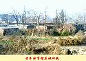 [组图]安阳市老年文体苑旧貌