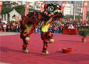 传统南狮精彩瞬间