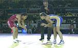 2014世锦赛女子跤58kg决赛