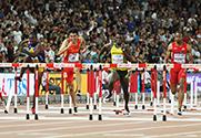 男子110米栏谢文骏第6无缘决赛