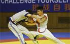 中国摔跤协会中国式摔跤发展委员会正式成立