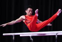 邹敬园夺得亚运会男子双杠冠军